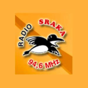 Radio Radio Sraka 94,6