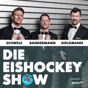 Die Eishockey Show