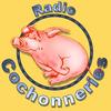 Radio-Cochonneries - Si c'est poche, on l'a