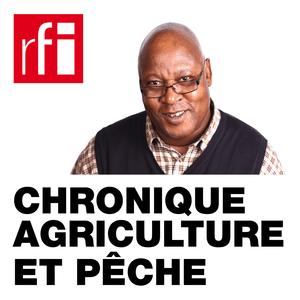 Podcast RFI - Chronique Agriculture et Pêche