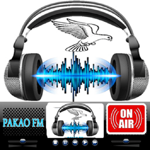 Radio Raddio Pakao FM