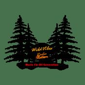 Radio WildVibes